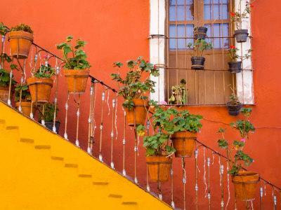 Colorful Stairs and House with Potted Plants, Guanajuato, Mexico