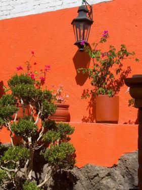 Colorful Wall with Lantern and Potted Plants, Guanajuato, Mexico by Julie Eggers