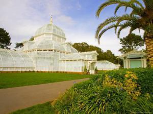 Golden Gate Park, San Francisco Conservatory of Flowers, San Francisco, California, USA by Julie Eggers