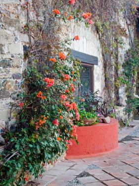 Grounds and Buildings of Historic La Valenciana Mine, Guanajuato State, Mexico by Julie Eggers