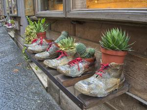 Italy, Tuscany. Shoe planters with plants decorating a shop along a street in a village in Tuscany. by Julie Eggers