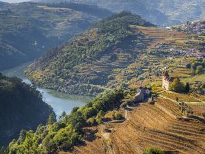 Portugal, Douro Valley. Vineyards and small community of the Douro Valley in autumn by Julie Eggers