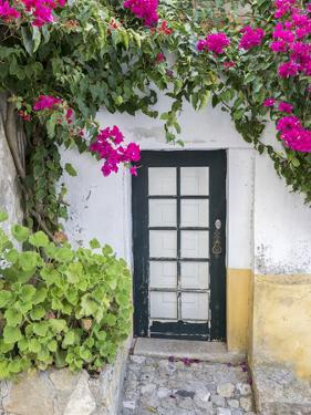 Portugal, Obidos. Doorway surrounded by a bougainvillea vine. by Julie Eggers