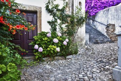 Street Along Obidos, Leiria, Portugal