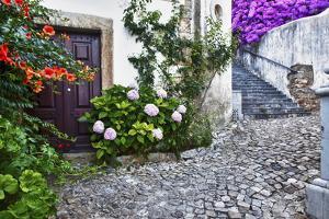 Street Along Obidos, Leiria, Portugal by Julie Eggers