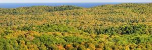 US, Michigan, Upper Peninsula. Panorama view of Porcupine Mountains Wilderness State Park by Julie Eggers