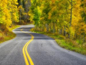 USA, Colorado. Curved Roadway near Aspen, Colorado in autumn colors and aspens groves. by Julie Eggers