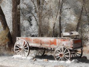 USA, Colorado. Old red wagon. by Julie Eggers