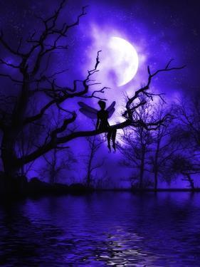 Celestial Night by Julie Fain