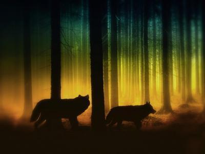 Forest Spirits by Julie Fain