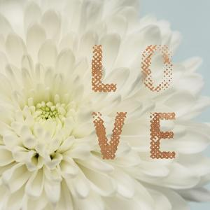 Love Flower by Julie Greenwood