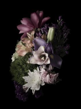 Midnight Magnolia by Julie Greenwood