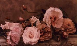 Palest Pink by Julie Greenwood