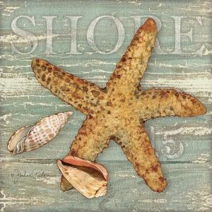 Beach Shells Starfish by Julie Paton