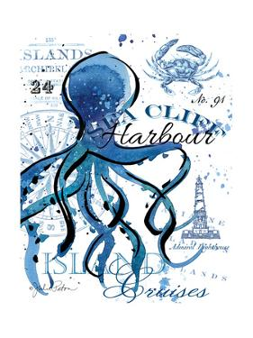 Sea Cliff Octopus by Julie Paton