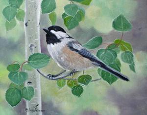 Chickadee in Aspen Tree by Julie Peterson