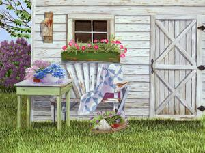 Garden Shed and Wren by Julie Peterson