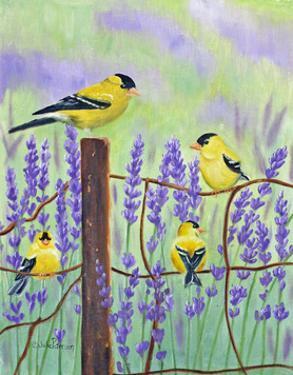 Gold Finch & Lavender by Julie Peterson