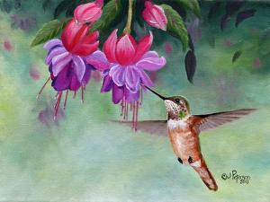 Hummer and Pink Fuchsias by Julie Peterson