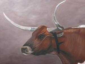 Longhorn by Julie Peterson