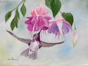Pink Fuchsias and Hummer by Julie Peterson