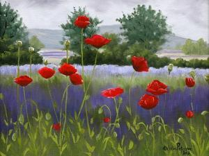 Poppies and Lavender by Julie Peterson