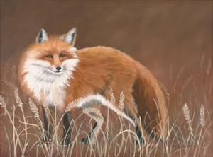Red Fox by Julie Peterson