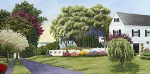 Summer Street by Julie Peterson
