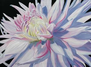 Touch of Pink by Julie Peterson