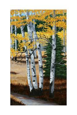 Trail into the Aspens Tript by Julie Peterson