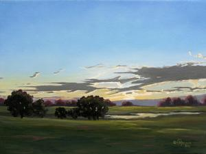 Twilight Sun by Julie Peterson