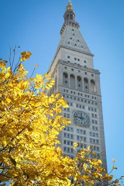 Clock tower, Madison Square park, New York City, NY, USA by Julien McRoberts
