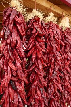 Hatch, New Mexico, Usa. Red chiles hang out to dry. by Julien McRoberts