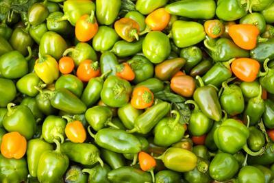 Peppers at a farmers market in the fall, New York City, NY, USA. by Julien McRoberts