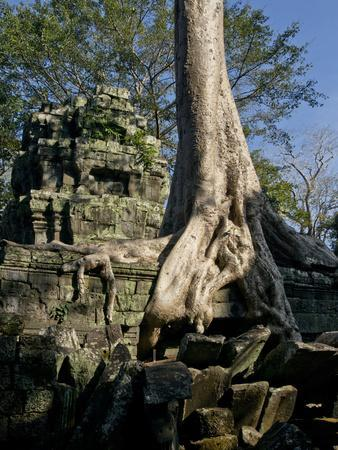 Angkor Wat Archaeological Park, Siem Reap, Cambodia, Indochina, Southeast Asia