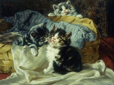 Playful Kittens by Julius Adam