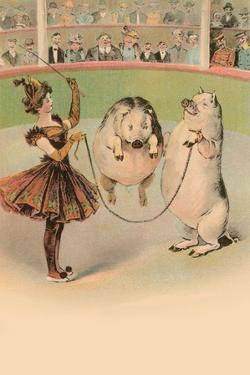 Jump Rope Pig