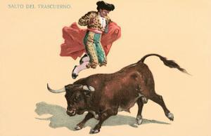 Jumping over Bull