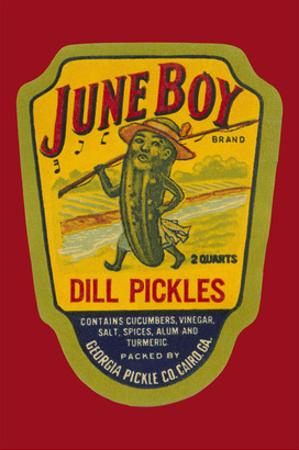 June Boy Dill Pickles