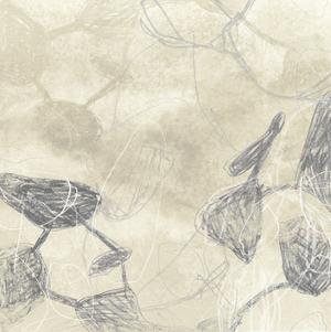 Graphite Inversion I by June Erica Vess