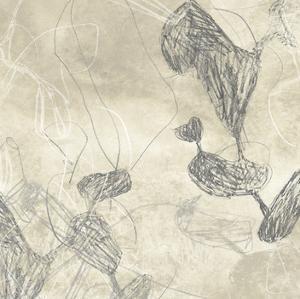 Graphite Inversion III by June Erica Vess