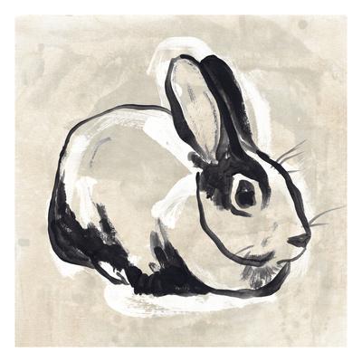 Antique Rabbit I