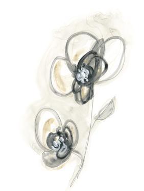 Monochrome Floral Study II by June Vess