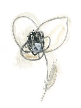 Monochrome Floral Study VII by June Vess