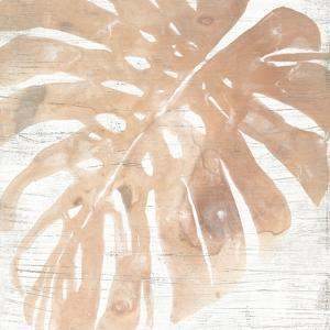Neutral Palm Fossil I by June Vess