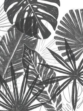 Palm Shadows I by June Vess