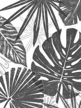 Palm Shadows II by June Vess
