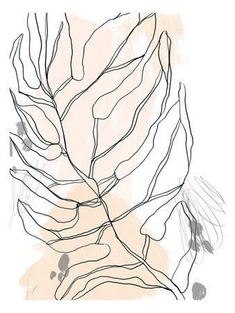 Palm Sketchbook IV