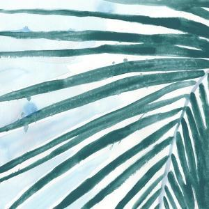 Palm Wonderful III by June Vess