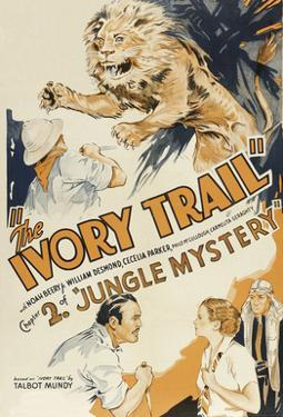 Jungle Mystery - the Ivory Trail